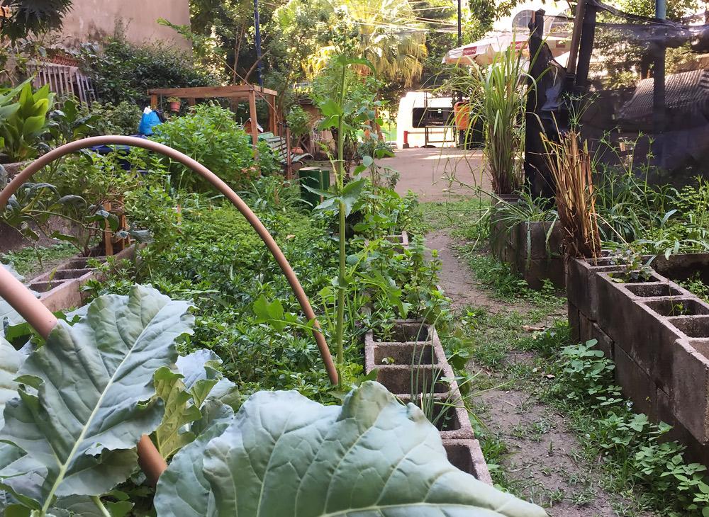 A horta comunitária do Cosme Velho é criada e mantida por moradores do bairro, ao lado do bondinho para o Cristo Redentor