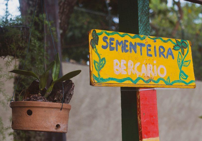 Os participantes do Jardim Secreto construíram uma sementeira e sua própria composteira para adubar as plantas