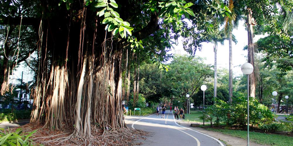 O Parque da Jaqueira, um dos mais tradicionais da cidade, tem uma longa pista de corrida