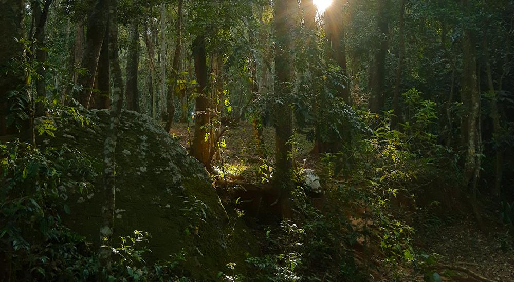 Imagem feita com a câmera de ação do motorolaone Action